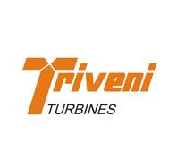 trivenigroup.com